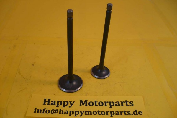 HMParts Pit Bike / Dirt Bike / ATV / Quad Ventil SET - CG 150 ccm