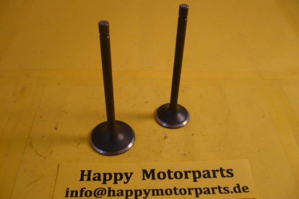 HMParts Pit Bike / Dirt Bike / ATV / Quad Ventil SET - 200 ccm